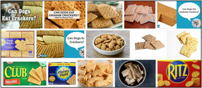 Can-Dogs-Eat-Crackers-700x306 Can Dogs Eat Crackers? All The Benefits And Disadvantages ** New