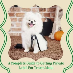 A Complete Guide to Getting Private Label Pet Treats Made